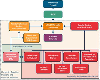 Diagram showing equality, diversity and inclusion groups and where they report