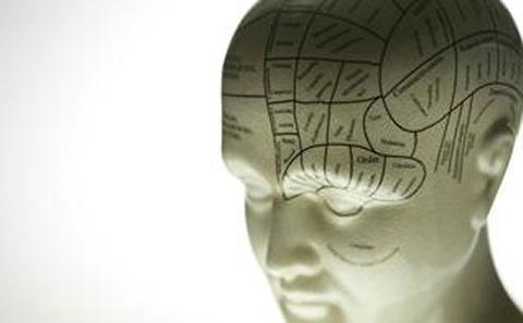 model of a human head