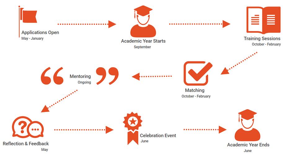 Career Mentoring Programme Timeline