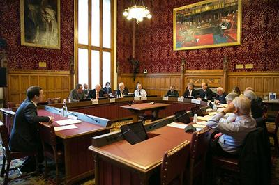 Oral evidence by University of Southampton Academics in response to Parliamentary inquiries