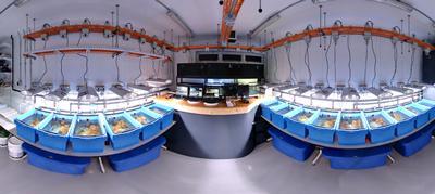 coral reef lab