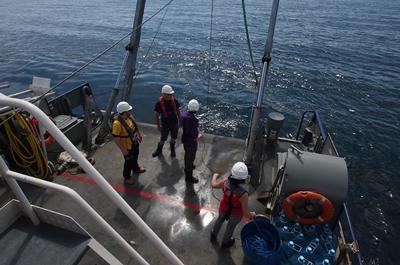 Oceanography Fieldwork, Falmouth