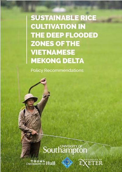 Mekong Delta Rice Policy Brief