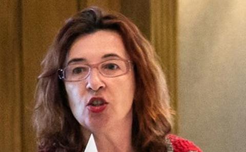 Professor Slabakova
