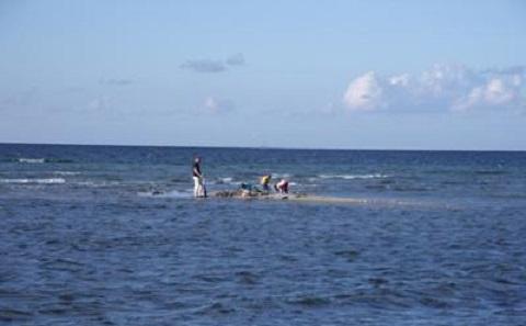 R.Nicholls by the sea