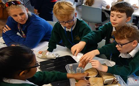 Primary science hands-on activity