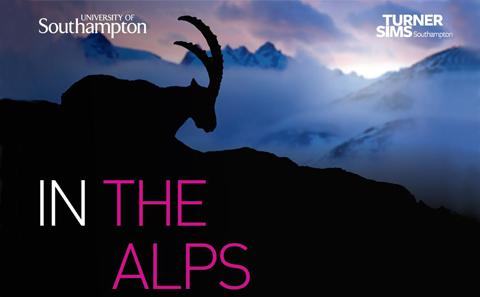 In the Alps poster