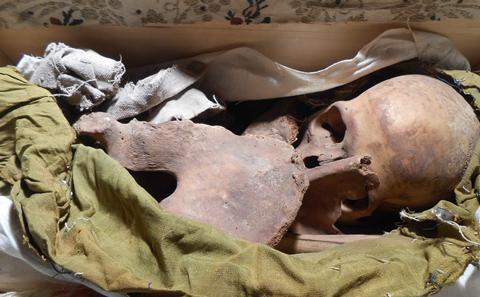 Bodies and bones