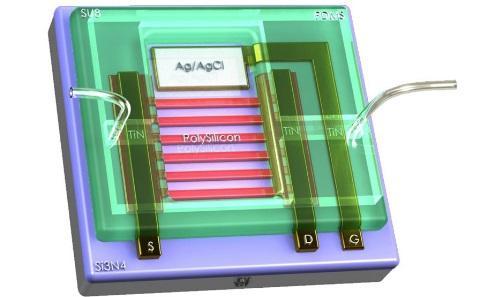 Schematic of a biosensor