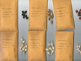 Variation in seed characteristics