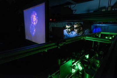 IfLS imaging lab at Southampton