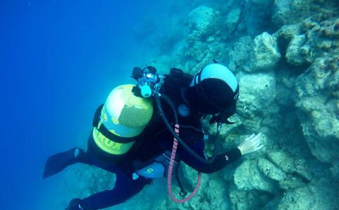 Diver inspects Roman marble quarry
