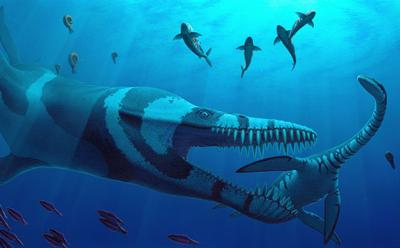 Artist's impression of plesiosaurs