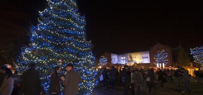 Christmas tree on campus