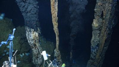 A hydrothermal vent chimney