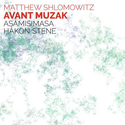 Avant Muzak - Dr Matthew Shlomowitz