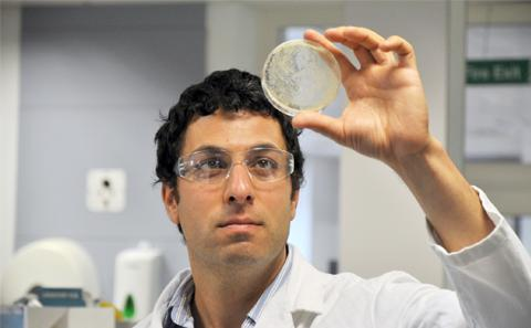 Professor Ali Tavassoli