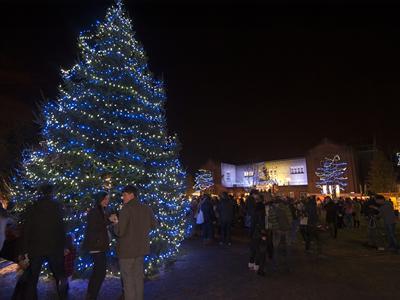 Campus Christmas Tree