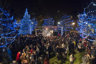 The Christmas lights switch on