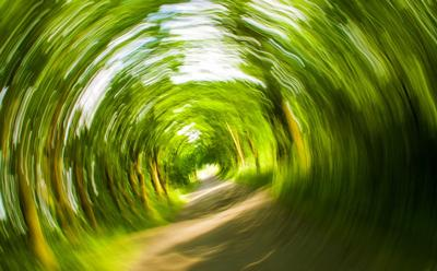 Dizziness image