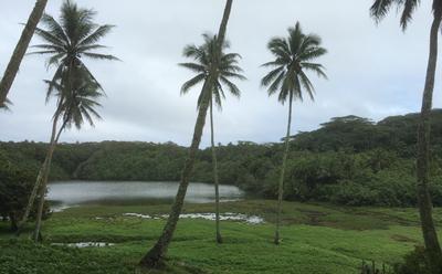 Lake Te Roto on Atiu