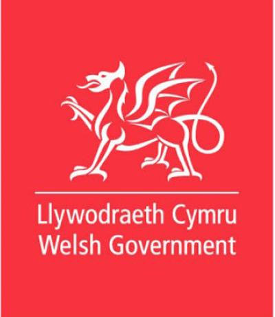 Welsh Government Report
