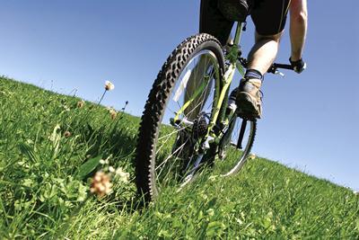 Bike in grass