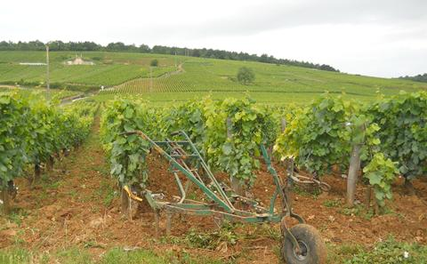 Cart in Burgundy Vineyards