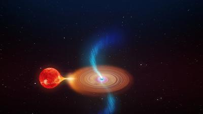 Black hole binary system