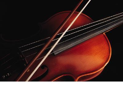 Image of a viola