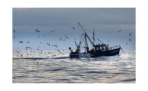 Marine Fisheries ship