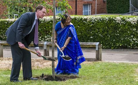 Planting the tree