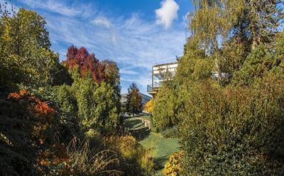 Highfield campus in autumn