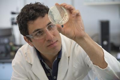 Image of Professor Ali Tavassoli