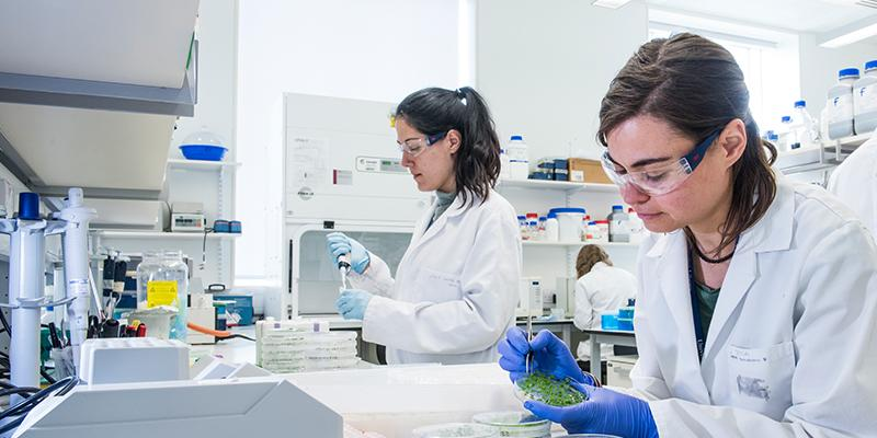 MRes in Advanced Biological Sciences