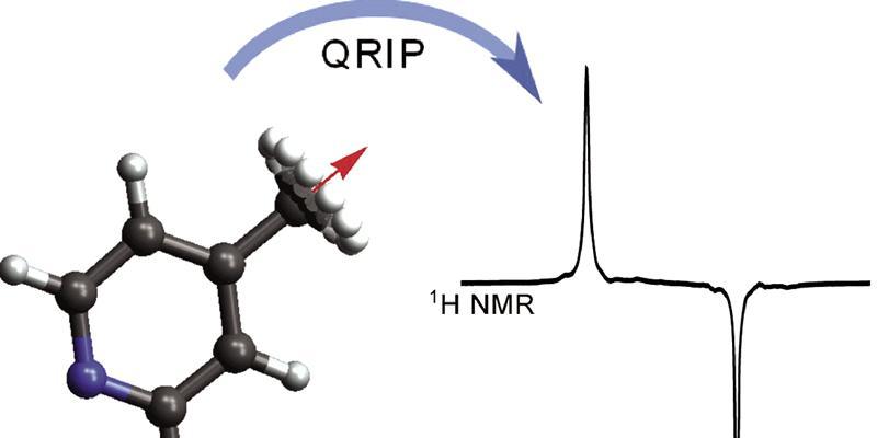 Quantum-rotor-induced polarization in g-picoline