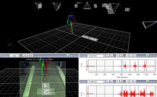 Motion analysis using the Vicon system