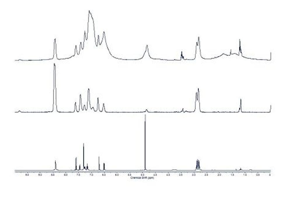 1D Proton NMR Spectra. Top: Unmodified pulse sequence; Middle: CPMG pulse sequence; Lower: solution proton spectrum (N. J. Wells, PhD Thesis, University of Southampton, 2002)
