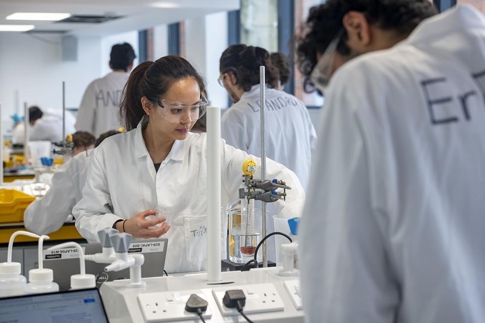 Students set up and monitor the Belousov-Zhabotinsky oscillating reaction