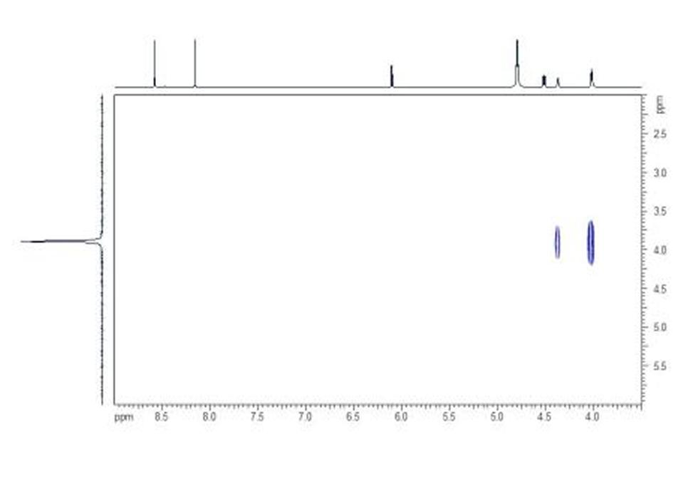 HP HMBC. In the HP HMBC spectrum the two- and three- bond couplings between 1H and 31P nuclei can be seen as cross-peaks.