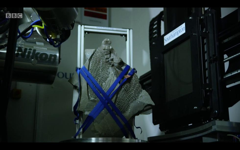 µ-VIS X-Ray Imaging Centre on 'Attenborough and the Sea Dragon'