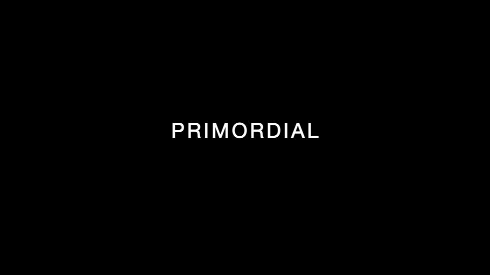 Intra-actions and Reconfigurations Screen 5 - Primordial