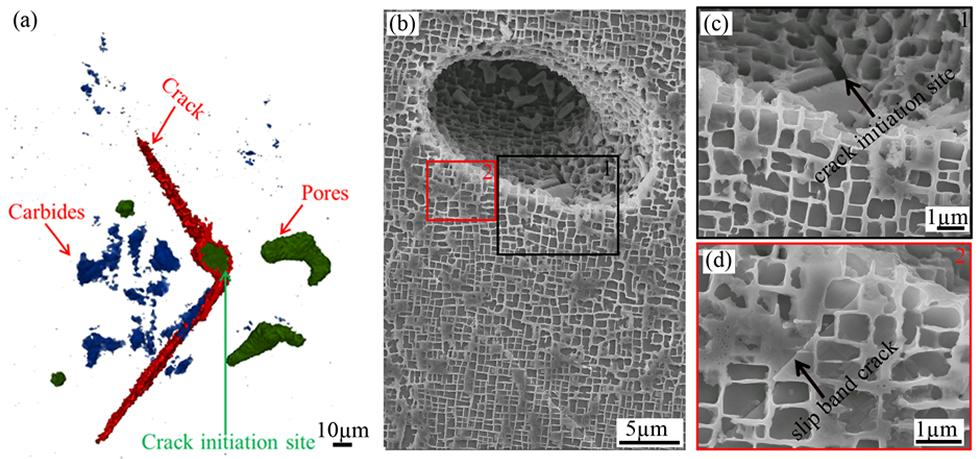 Figure 2 - CT of the crack morphology at 55k cycles and crack initiation at the bottom of the pore at 50 cycles
