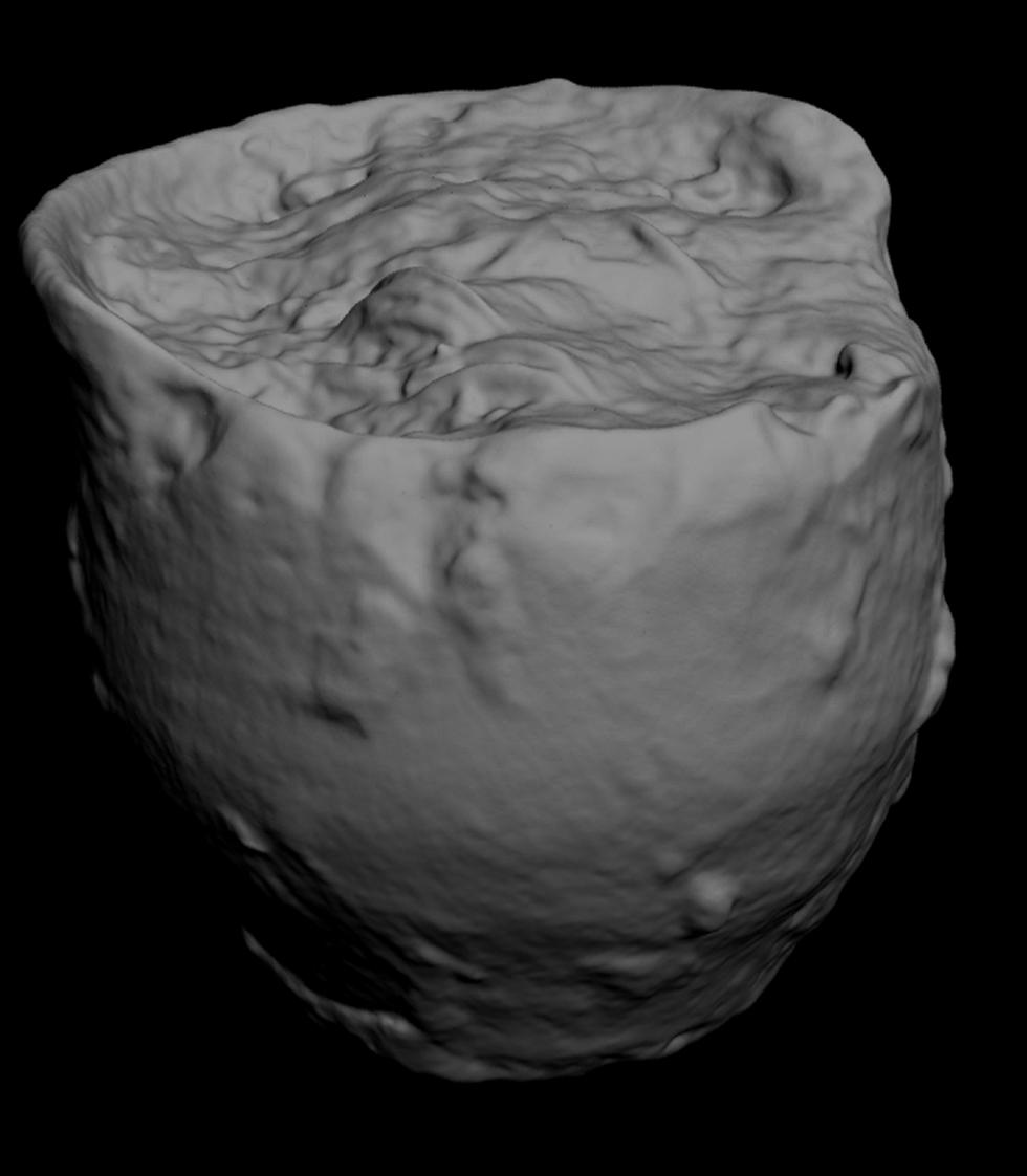 Figure 5 - Laser scan of the exterior of the pot