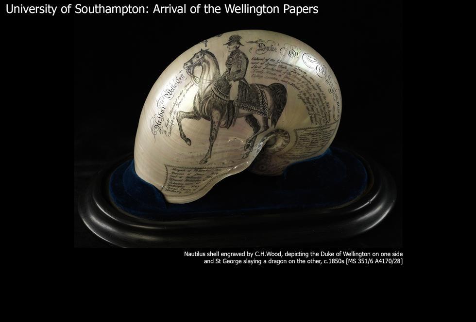 Image #26: Wellington Shell