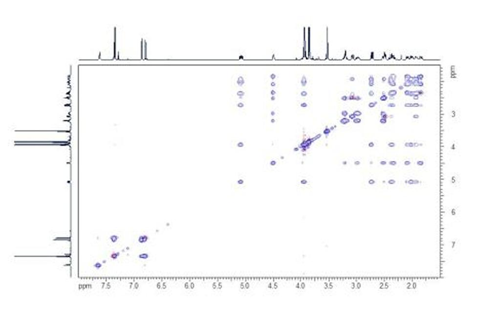 TOCSY. The HH TOCSY spectrum shows correlations that belong together in contiguous spin systems.