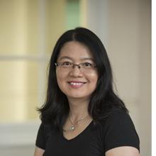 Thumbnail photo of Dr Ying Zheng