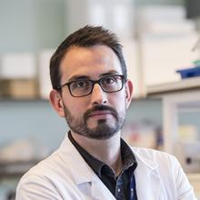 Thumbnail photo of Dr Diego Gomez-Nicola