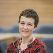 Thumbnail photo of Professor Catherine Pope