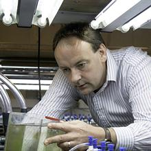 Thumbnail photo of Professor Martin Solan